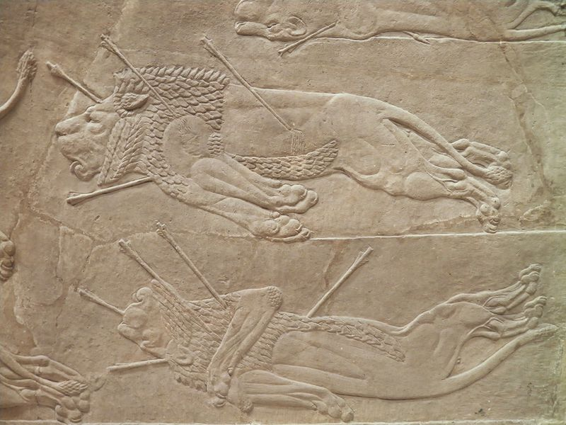 800px-The_Royal_lion_hunt_reliefs_from_the_Assyrian_palace_at_Nineveh,_dead_lions_and_a_lioness,_about_645-635_BC,_British_Museum_(12255284476)